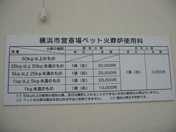 20091030_16.JPG